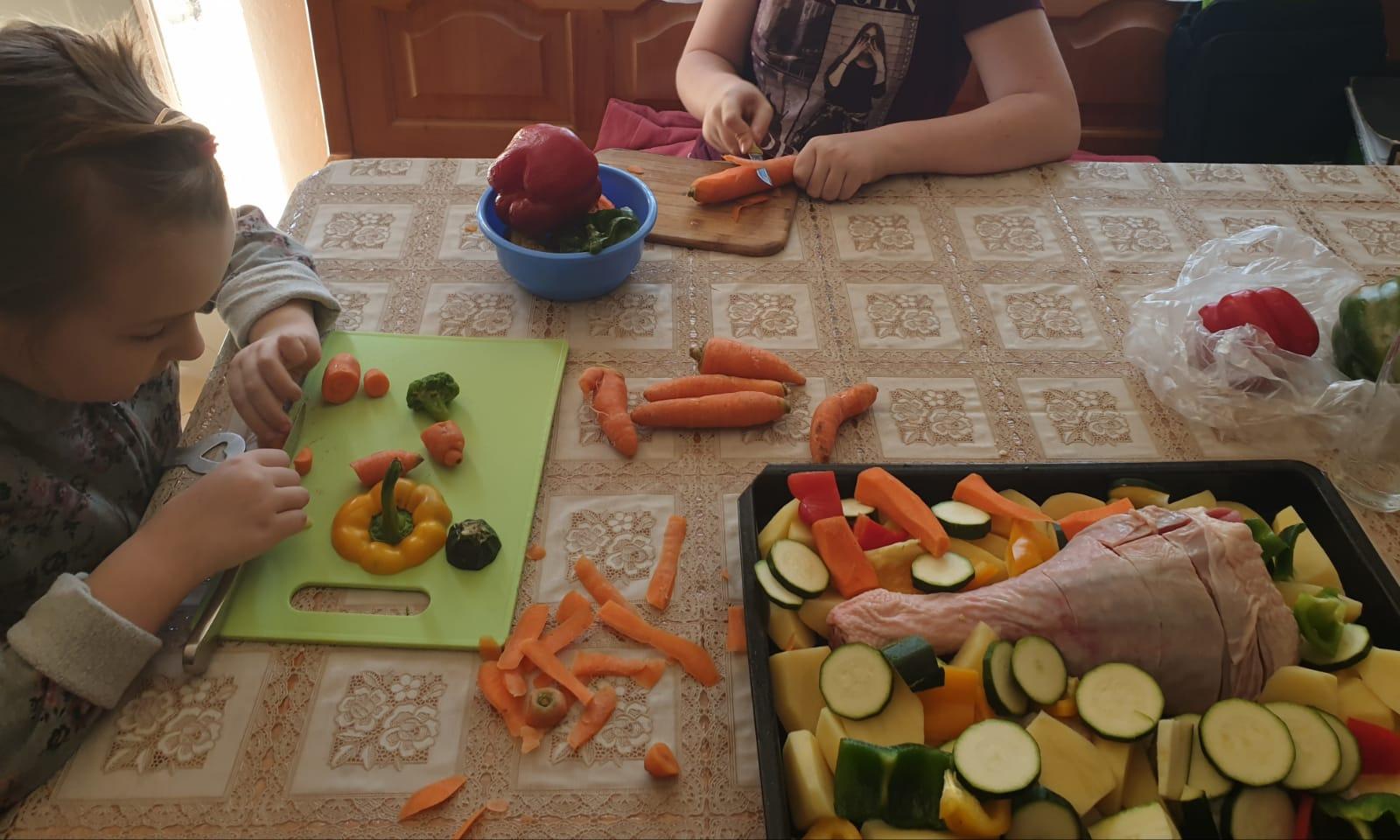 Povrće u službi nastave