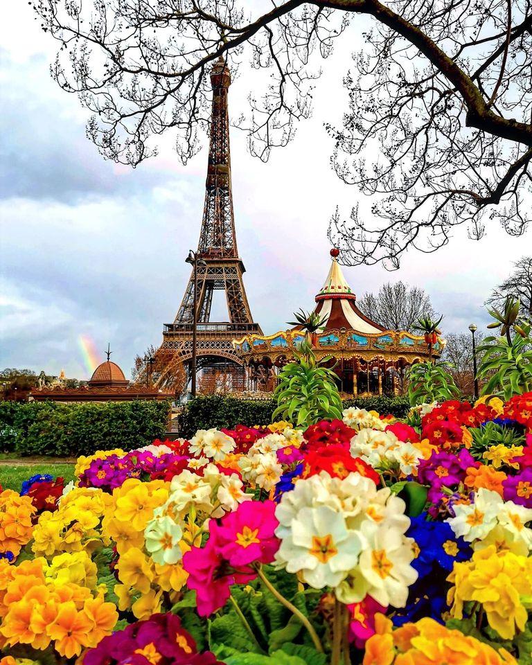 Fotografija Erasmusa u Parizu