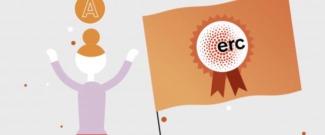 ERC vizual