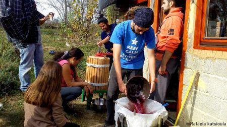 Međunarodni volonteri pomažu u Latinovcu